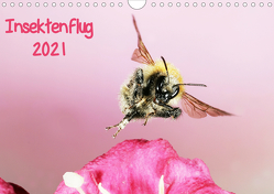 Insektenflug 2021 (Wandkalender 2021 DIN A4 quer) von Schmidt,  Jürgen
