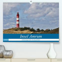 Insel Amrum – stimmungsvolle NordseebilderCH-Version (Premium, hochwertiger DIN A2 Wandkalender 2020, Kunstdruck in Hochglanz) von Potratz,  Andrea