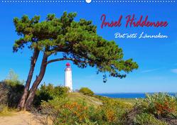 Insel Hiddensee – Dat söte Länneken (Wandkalender 2019 DIN A2 quer) von LianeM