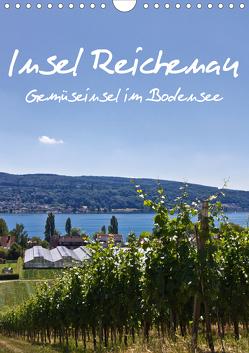 Insel Reichenau – Gemüseinsel im Bodensee (Wandkalender 2020 DIN A4 hoch) von Ergler,  Anja