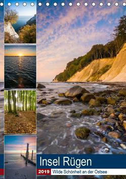 Insel Rügen – Wilde Schönheit an der Ostsee (Tischkalender 2019 DIN A5 hoch) von Wasilewski,  Martin