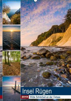 Insel Rügen – Wilde Schönheit an der Ostsee (Wandkalender 2019 DIN A2 hoch) von Wasilewski,  Martin