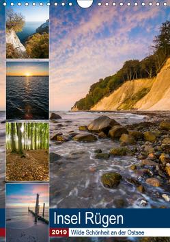 Insel Rügen – Wilde Schönheit an der Ostsee (Wandkalender 2019 DIN A4 hoch) von Wasilewski,  Martin