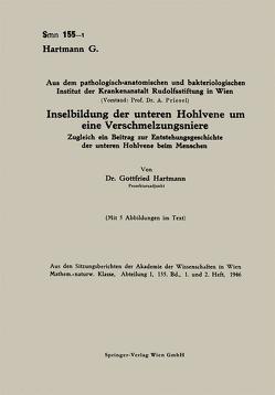 Inselbildung der unteren Hohlvene um eine Verschmelzungsniere von Hartmann,  Gottfried
