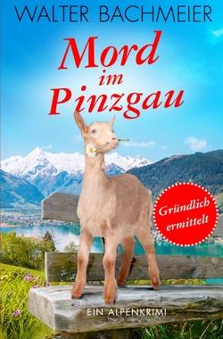Inspektor Tina Gründlich / Mord im Pinzgau von Bachmeier,  Walter