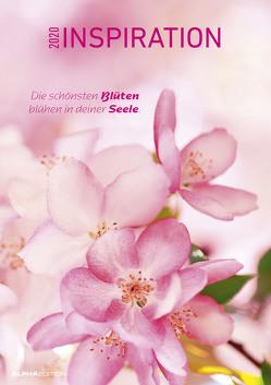 Inspiration 2020 – Bildkalender A3 (30 x 42) – Motivationskalender mit Sprüchen – Meditationskalender – Wandkalender von ALPHA EDITION