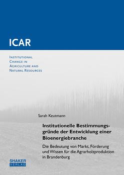 Institutionelle Bestimmungsgründe der Entwicklung einer Bioenergiebranche von Keutmann,  Sarah