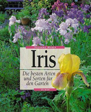 Iris von Weber,  Susanne