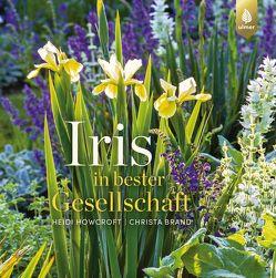 Iris in bester Gesellschaft von Brand,  Christa, Howcroft,  Heidi