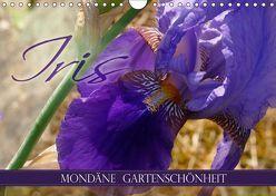 Iris – mondäne Gartenschönheit (Wandkalender 2019 DIN A4 quer) von B-B Müller,  Christine