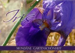 Iris – mondäne Gartenschönheit (Wandkalender 2020 DIN A2 quer) von B-B Müller,  Christine