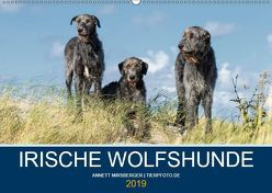 Irische Wolfshunde (Wandkalender 2019 DIN A2 quer) von Mirsberger,  Annett, www.tierpfoto.de