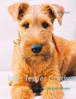 Irish Terrier Gordy von Ruhl,  Ulrich