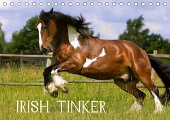 Irish Tinker (Tischkalender 2020 DIN A5 quer) von Wejat-Zaretzke,  Gabriela