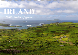 IRLAND. 1000 shades of green (Wandkalender 2020 DIN A2 quer) von Molitor,  Michael
