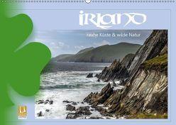 Irland – Rauhe Küste und Wilde Natur (Wandkalender 2019 DIN A2 quer) von Stamm,  Dirk