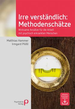 Irre Verständlich: Methodenschätze von Hammer,  Matthias, Plößl,  Irmgard