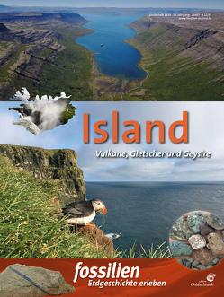 Island von Redaktion Fossilien