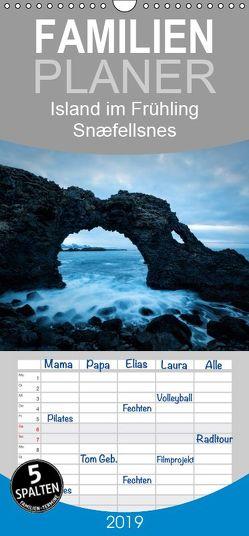 Island im Frühling – Snæfellsnes – Familienplaner hoch (Wandkalender 2019 , 21 cm x 45 cm, hoch) von Kreiten,  Mike