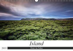 Island – Natur im Fokus (Wandkalender 2019 DIN A3 quer) von Weck,  Dieter