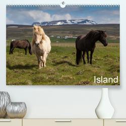 Island (Premium, hochwertiger DIN A2 Wandkalender 2021, Kunstdruck in Hochglanz) von Gulbins,  Helmut