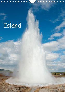 Island (Wandkalender 2019 DIN A4 hoch) von Scholz,  Frauke
