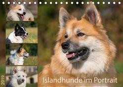 Islandhunde im Portrait (Tischkalender 2019 DIN A5 quer) von Scheurer,  Monika