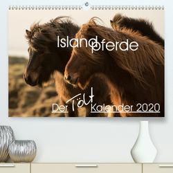 Islandpferde – Der Tölt Kalender (Premium, hochwertiger DIN A2 Wandkalender 2020, Kunstdruck in Hochglanz) von van der Wiel www.kalender-atelier.de,  Irma