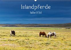 Islandpferde take it Isi (Wandkalender 2019 DIN A2 quer) von Gerken,  Klaus