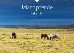 Islandpferde take it Isi (Wandkalender 2019 DIN A3 quer) von Gerken,  Klaus