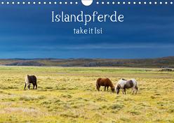 Islandpferde take it Isi (Wandkalender 2019 DIN A4 quer) von Gerken,  Klaus