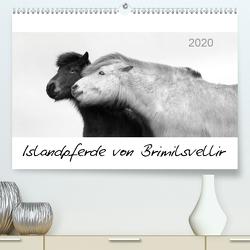 Islandpferde von Brimilsvellir (Premium, hochwertiger DIN A2 Wandkalender 2020, Kunstdruck in Hochglanz) von Albert,  Jutta