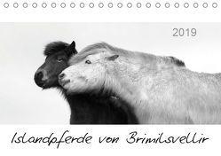 Islandpferde von Brimilsvellir (Tischkalender 2019 DIN A5 quer) von Albert,  Jutta