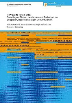 IT-Projekte leiten (210) von Badertscher,  Kurt, Gubelmann,  Josef, Romano,  Roger, Scheuring,  Johannes