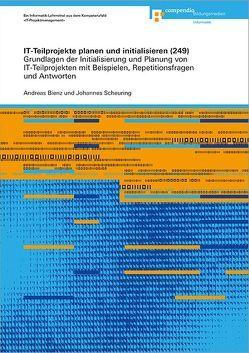 IT-Teilprojekte planen und initialisieren (249) von Bienz,  Andreas, Scheuring,  Johannes