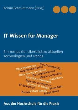 IT-Wissen für Manager von Schmidtmann,  Achim