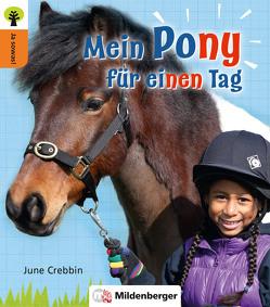 Ja sowas! Mein Pony für einen Tag von Crebbin,  June, Oelschlegel,  Stephanie, Patton,  Julia