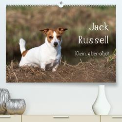 Jack Russell – Klein, aber oho! (Premium, hochwertiger DIN A2 Wandkalender 2020, Kunstdruck in Hochglanz) von Mirsberger tierpfoto.de,  Annett