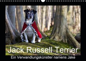 Jack Russell Terrier…..Ein Verwandlungskünstler namens Jake (Wandkalender 2021 DIN A3 quer) von S. + J. Schröder,  AWS, Schroeder,  Susanne, Werbeagentur