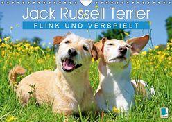 Jack Russell Terrier: flink und verspielt (Wandkalender 2019 DIN A4 quer)