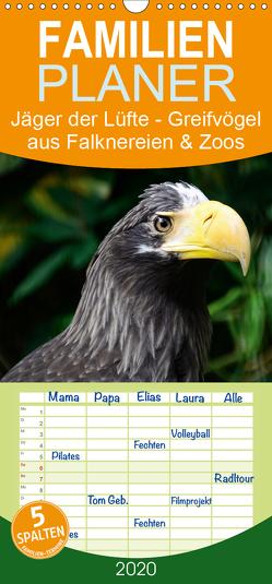 Jäger der Lüfte – Greifvögel aus Falknereien und Zoos – Familienplaner hoch (Wandkalender 2020 , 21 cm x 45 cm, hoch) von Widdmann,  Uwe