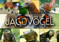 Jagdvögel (Wandkalender 2019 DIN A2 quer) von Bleicher,  Renate