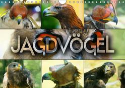 Jagdvögel (Wandkalender 2019 DIN A4 quer) von Bleicher,  Renate