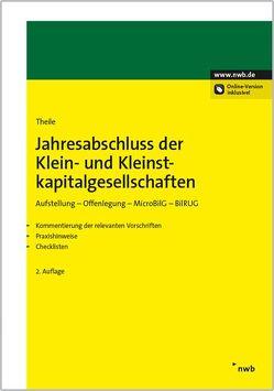 Jahresabschluss der Klein- und Kleinstkapitalgesellschaften von Theile,  Carsten