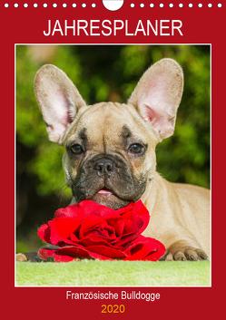 Jahresplaner Französische Bulldogge (Wandkalender 2020 DIN A4 hoch) von Starick,  Sigrid
