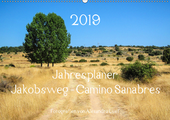 Jahresplaner Jakobsweg – Camino Sanabres (Wandkalender 2019 DIN A2 quer) von Luef,  Alexandra
