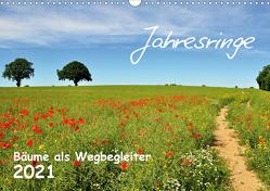 Jahresringe – Bäume als Wegbegleiter (Wandkalender 2021 DIN A3 quer) von Düll,  Sigrun