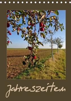 Jahreszeiten (Tischkalender 2021 DIN A5 hoch) von Flori0