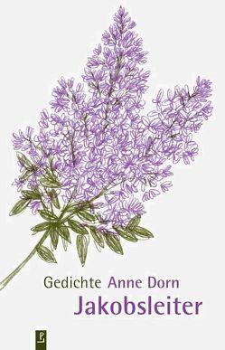 Jakobsleiter von Dorn,  Anne