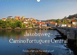 Jakobsweg – Camino Portugues Central (Wandkalender 2018 DIN A3 quer) von Luef,  Alexandra